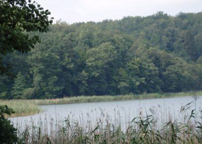 jezioro Czarne