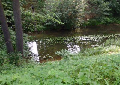 rzeka Dajna