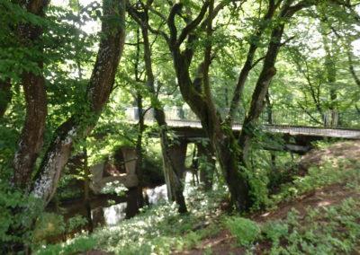 most na rzece Dajna