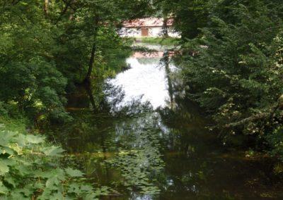 rzeka Dajna, w dalszym planie Zakład Rybacki